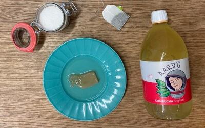 Hoe maak je kombucha? Doe het zelf, gemakkelijk en snel!