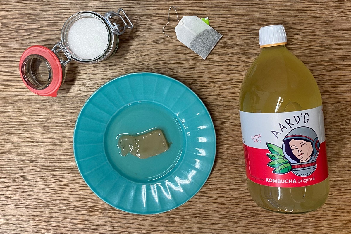De ingrediënten voor het maken van kombucha: suiker, thee, een SCOBY en kombucha.